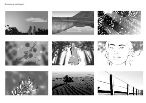 Snowberry storyboard